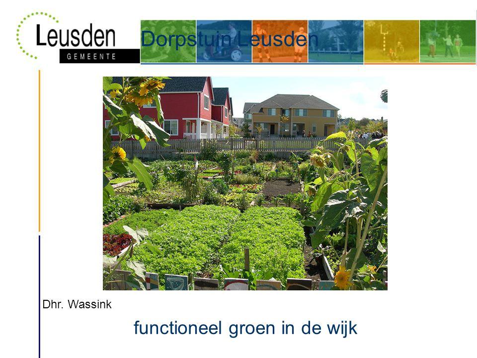 Dorpstuin Leusden functioneel groen in de wijk Dhr. Wassink