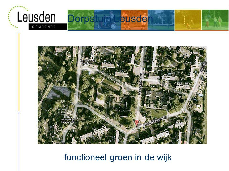 Dorpstuin Leusden functioneel groen in de wijk