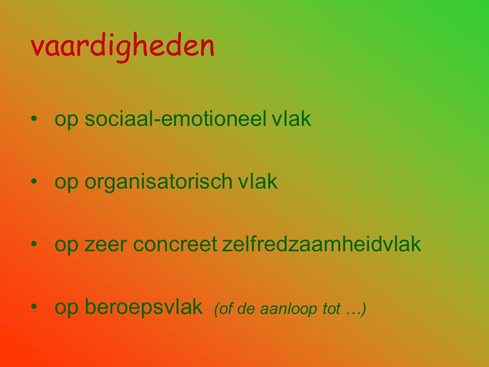 vaardigheden • op sociaal-emotioneel vlak • op organisatorisch vlak • op zeer concreet zelfredzaamheidvlak • op beroepsvlak (of de aanloop tot …)