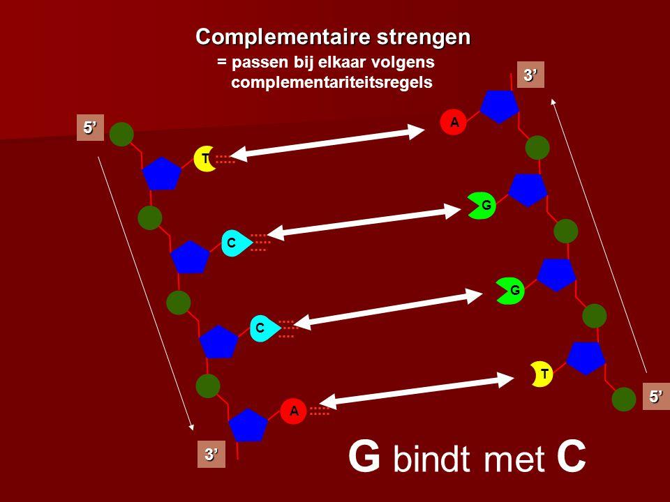 C A 5' 3' C T A G3'5' T G Complementaire strengen = passen bij elkaar volgens complementariteitsregels T bindt met AG bindt met C