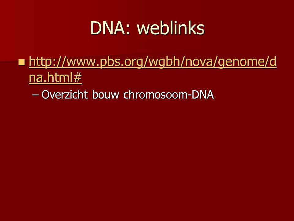 DNA: weblinks  http://www.pbs.org/wgbh/nova/genome/d na.html# http://www.pbs.org/wgbh/nova/genome/d na.html# http://www.pbs.org/wgbh/nova/genome/d na.html# –Overzicht bouw chromosoom-DNA
