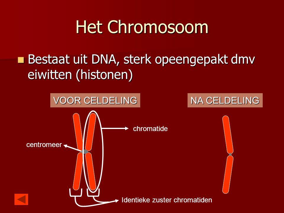 Het Chromosoom  Bestaat uit DNA, sterk opeengepakt dmv eiwitten (histonen) chromatide centromeer Identieke zuster chromatiden VOOR CELDELING NA CELDE