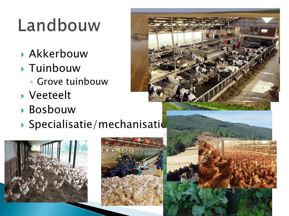  Akkerbouw  Tuinbouw ◦ Grove tuinbouw  Veeteelt  Bosbouw  Specialisatie/mechanisatie/intensivering