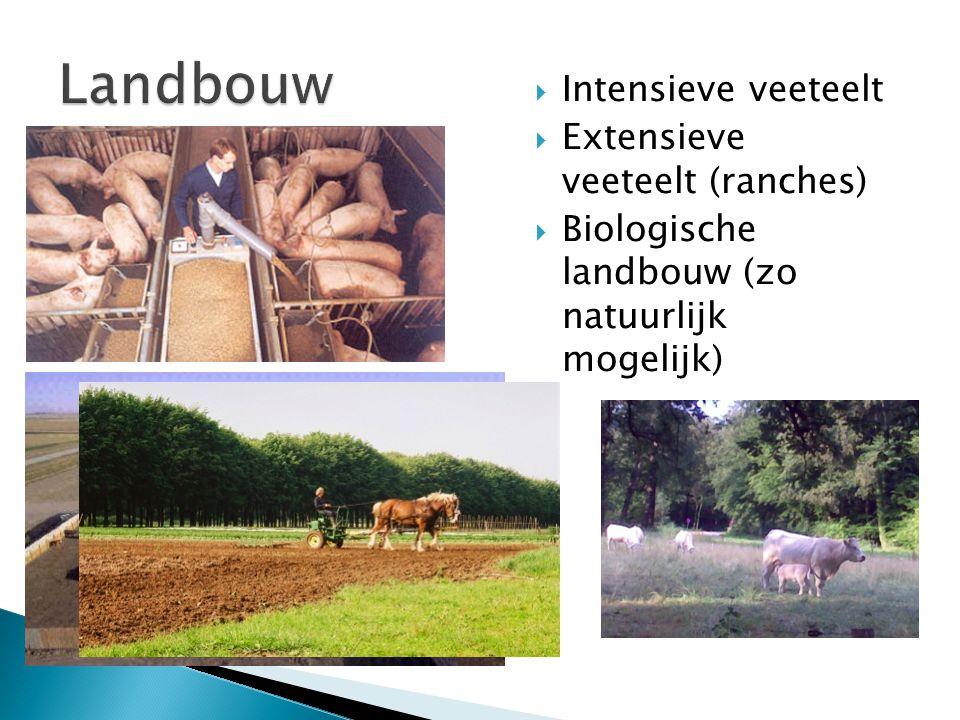  Intensieve veeteelt  Extensieve veeteelt (ranches)  Biologische landbouw (zo natuurlijk mogelijk)