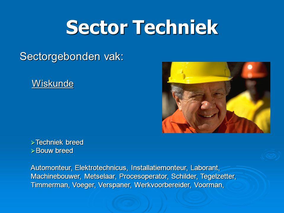 Sector Techniek Sectorgebonden vak: Wiskunde Wiskunde  Techniek breed  Bouw breed Automonteur, Elektrotechnicus, Installatiemonteur, Laborant, Machi
