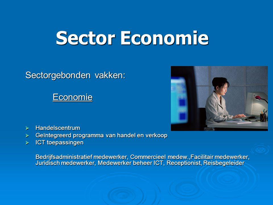 Sector Economie Sectorgebonden vakken: Economie  Handelscentrum  Geïntegreerd programma van handel en verkoop  ICT toepassingen Bedrijfsadministrat