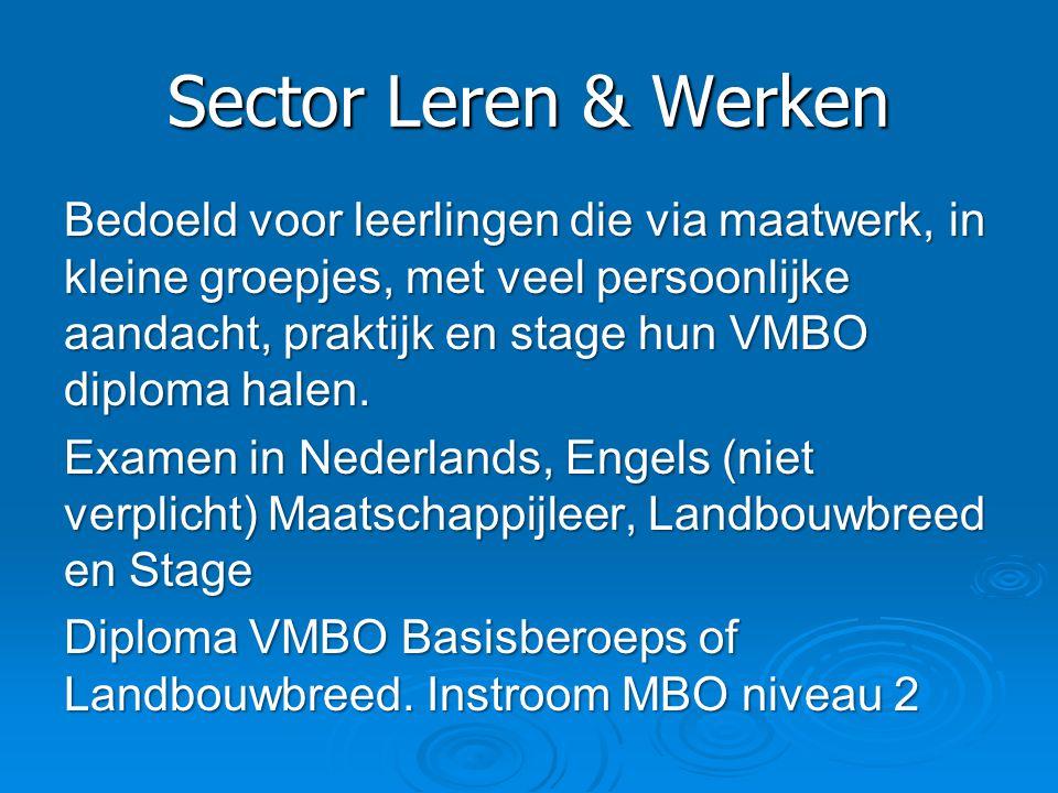 Sector Leren & Werken Bedoeld voor leerlingen die via maatwerk, in kleine groepjes, met veel persoonlijke aandacht, praktijk en stage hun VMBO diploma