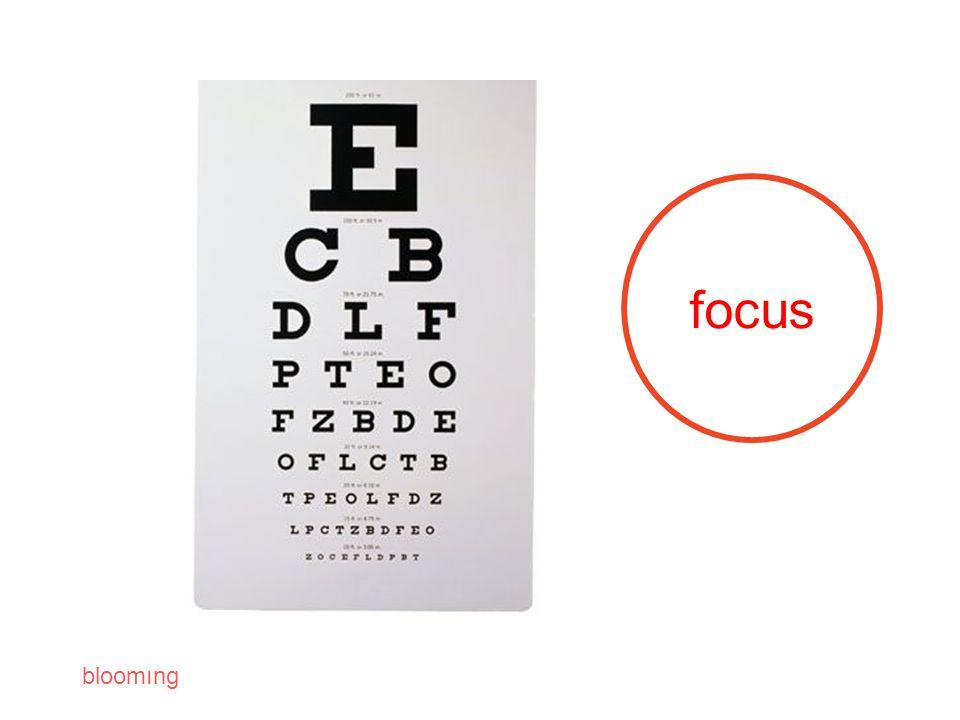 bloomıng focus