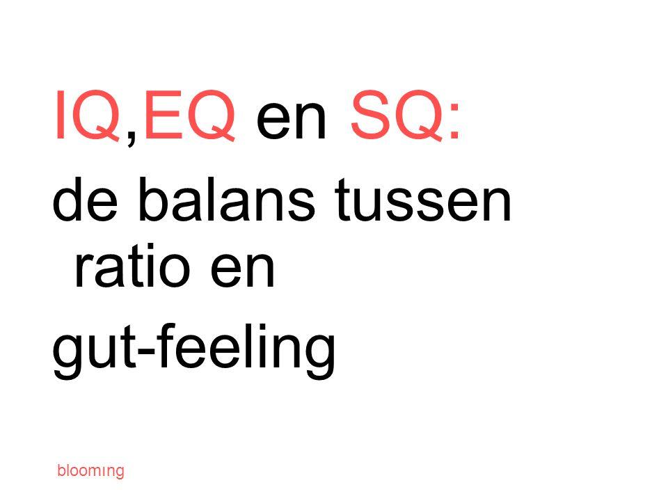 bloomıng IQ,EQ en SQ: de balans tussen ratio en gut-feeling