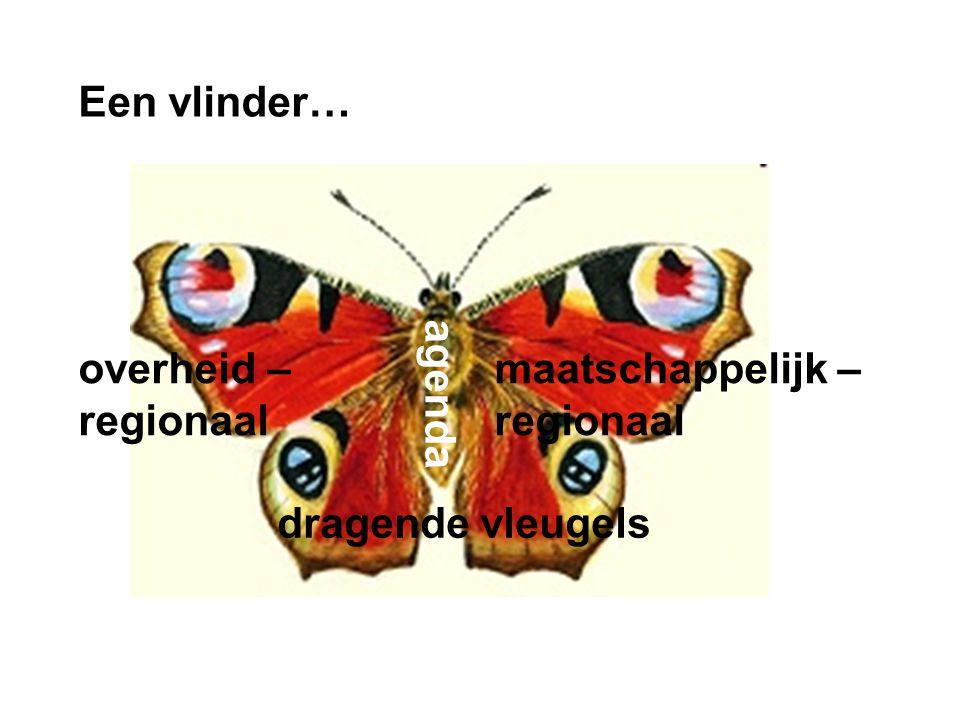 Een vlinder… dia agenda dragende vleugels maatschappelijk – regionaal overheid – regionaal