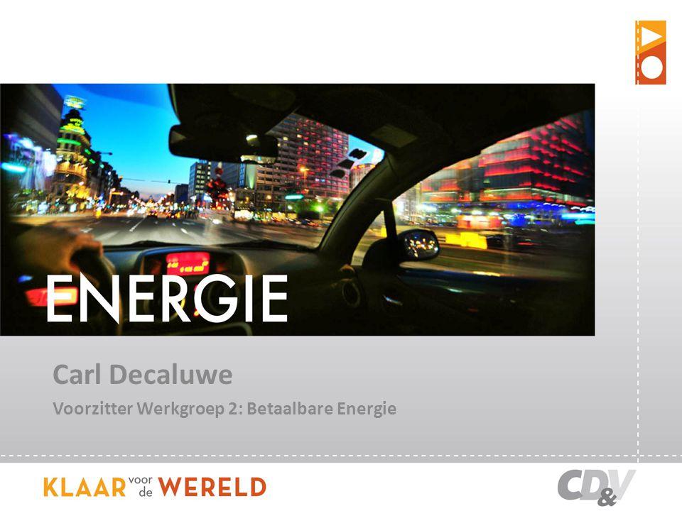 Carl Decaluwe Voorzitter Werkgroep 2: Betaalbare Energie