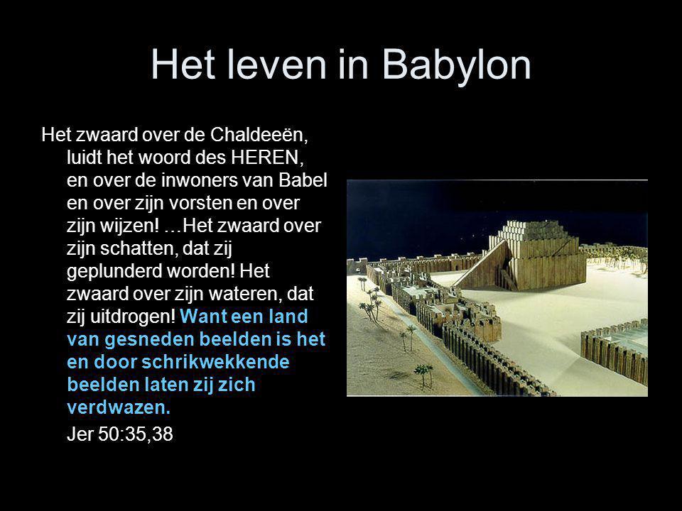 Het leven in Babylon Het zwaard over de Chaldeeën, luidt het woord des HEREN, en over de inwoners van Babel en over zijn vorsten en over zijn wijzen!