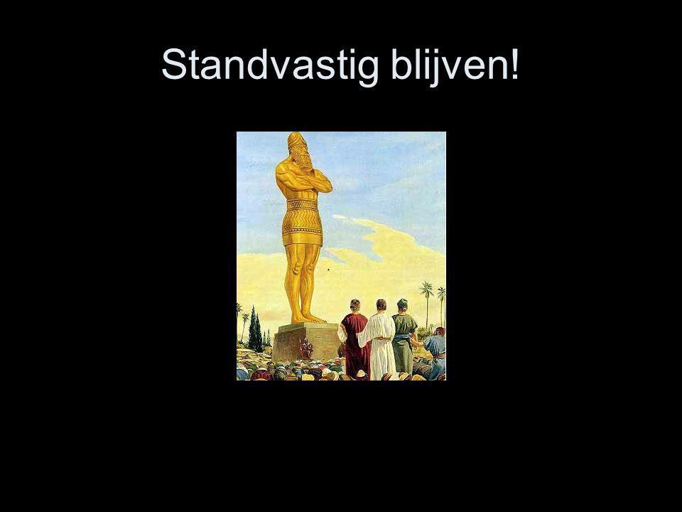 Standvastig blijven!