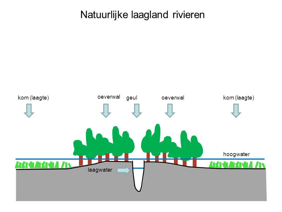 Natuurlijke laagland rivieren hoogwater geuloeverwal kom (laagte) oeverwal kom (laagte) laagwater