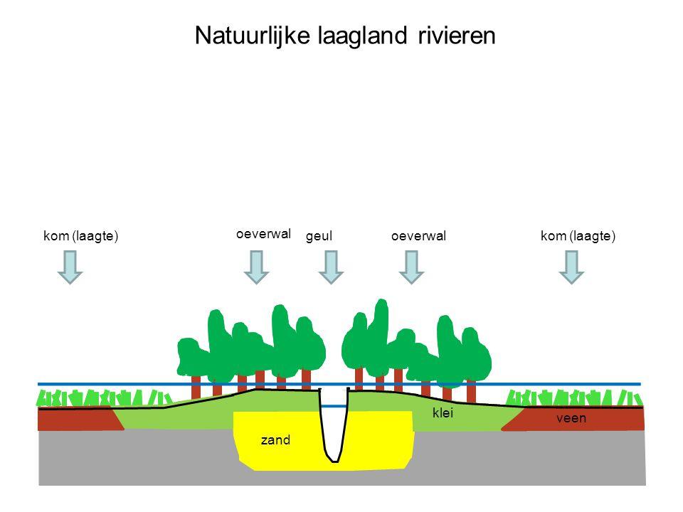 laagwater Natuurlijke laagland rivieren