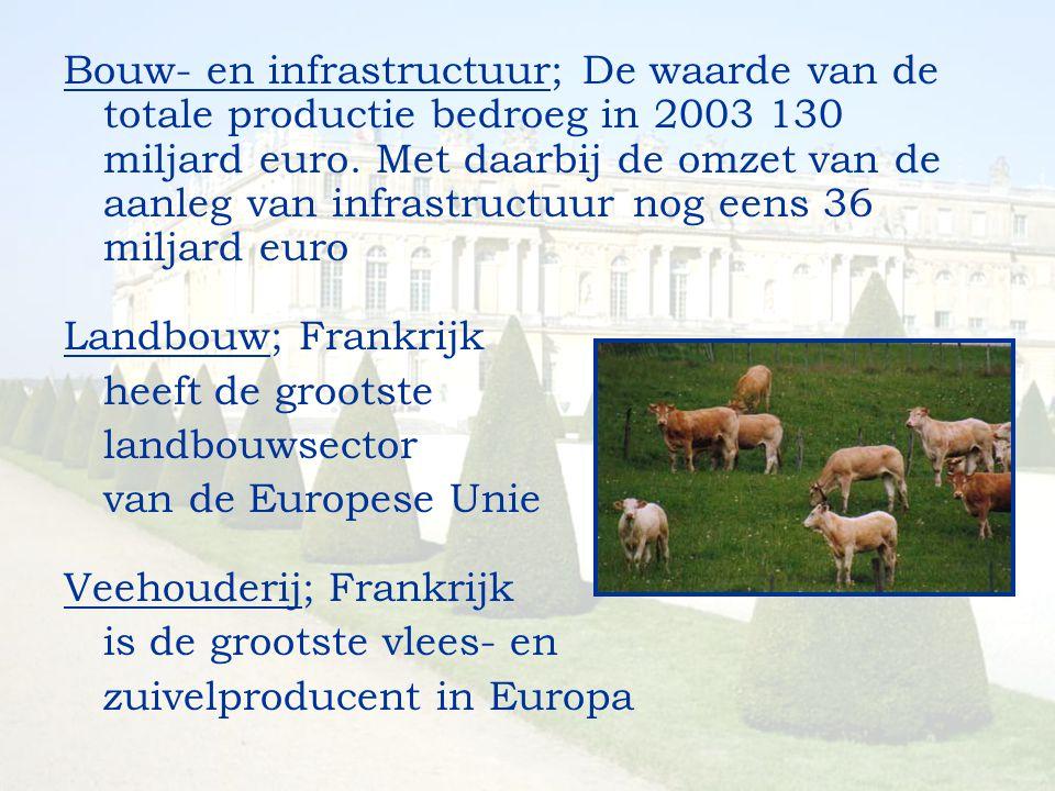 Bouw- en infrastructuur; De waarde van de totale productie bedroeg in 2003 130 miljard euro. Met daarbij de omzet van de aanleg van infrastructuur nog