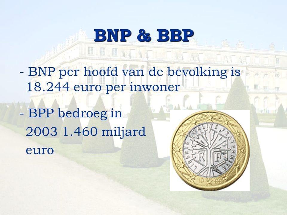 BNP & BBP - BNP per hoofd van de bevolking is 18.244 euro per inwoner - BPP bedroeg in 2003 1.460 miljard euro