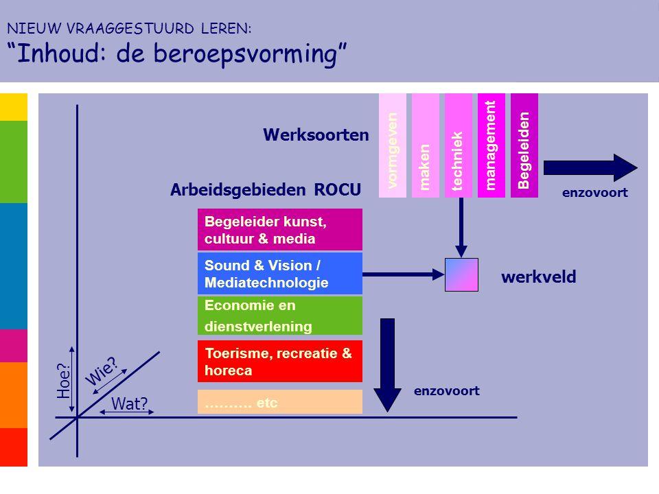 Wat? Wie? Hoe? makentechniek management Economie en dienstverlening vormgeven ………. etc Begeleider kunst, cultuur & media Toerisme, recreatie & horeca