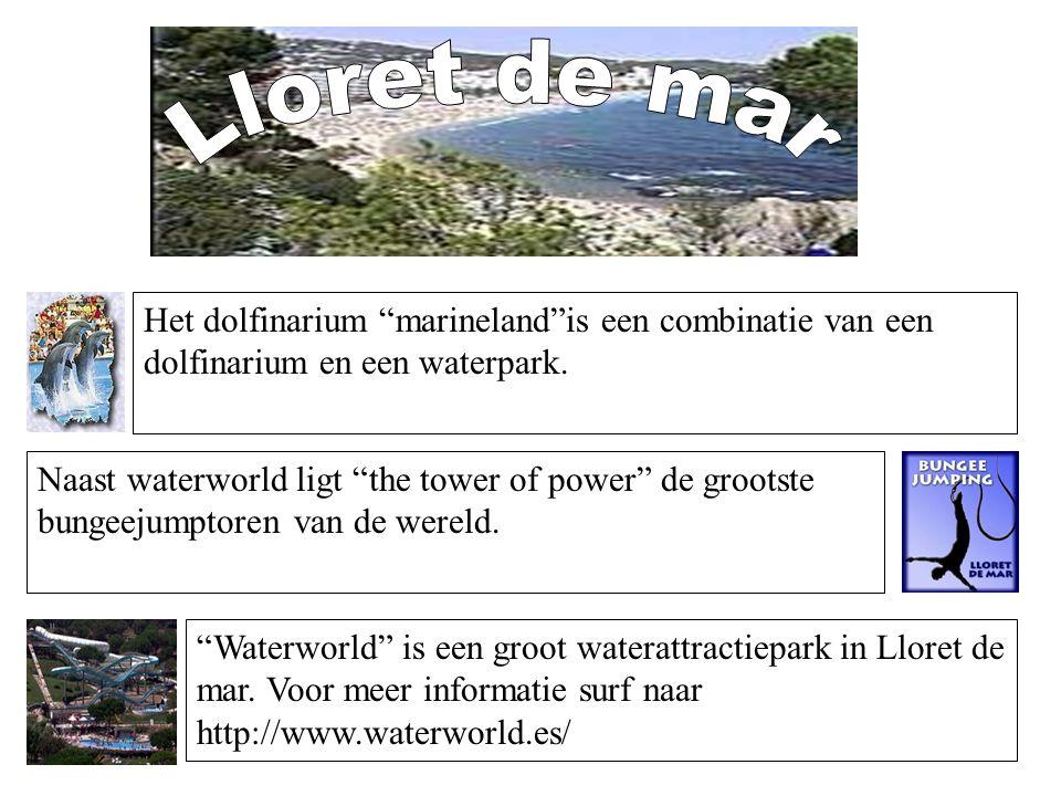 """Het dolfinarium """"marineland""""is een combinatie van een dolfinarium en een waterpark. Naast waterworld ligt """"the tower of power"""" de grootste bungeejumpt"""