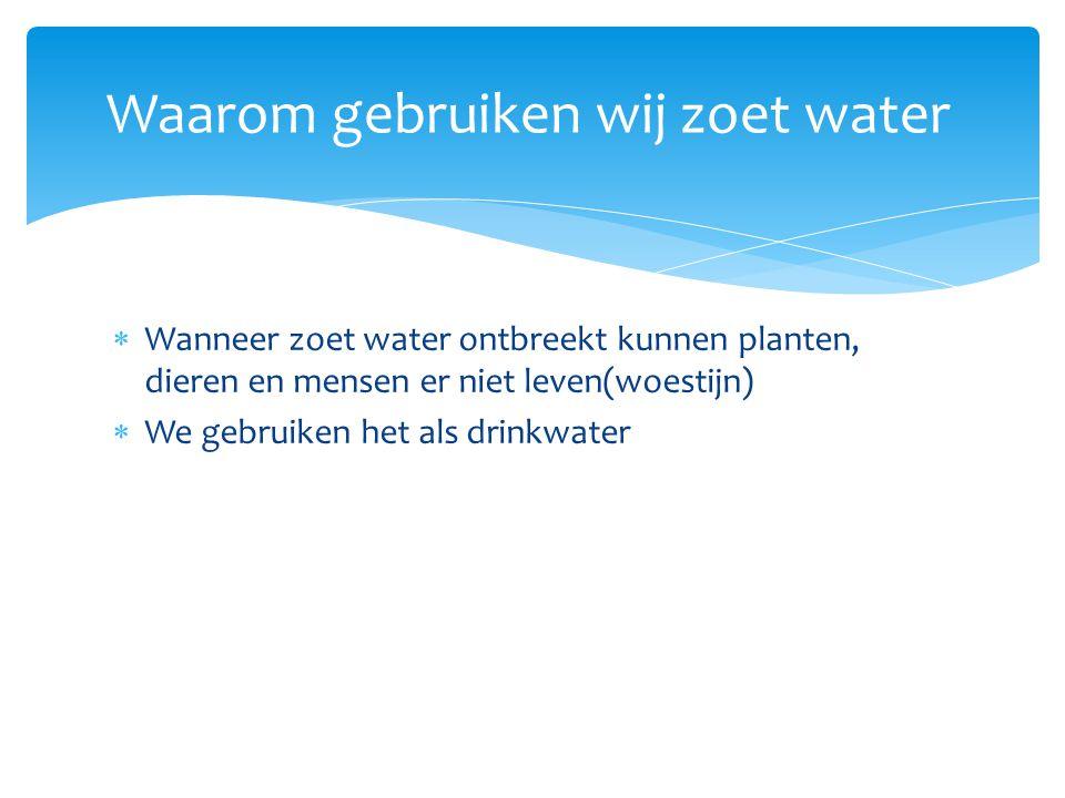  Wanneer zoet water ontbreekt kunnen planten, dieren en mensen er niet leven(woestijn)  We gebruiken het als drinkwater  Lichamelijke verzorging(wc, douchen, wassen) Waarom gebruiken wij zoet water