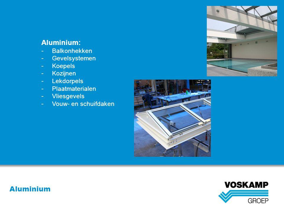 Aluminium Aluminium: -Balkonhekken -Gevelsystemen -Koepels -Kozijnen -Lekdorpels -Plaatmaterialen -Vliesgevels -Vouw- en schuifdaken