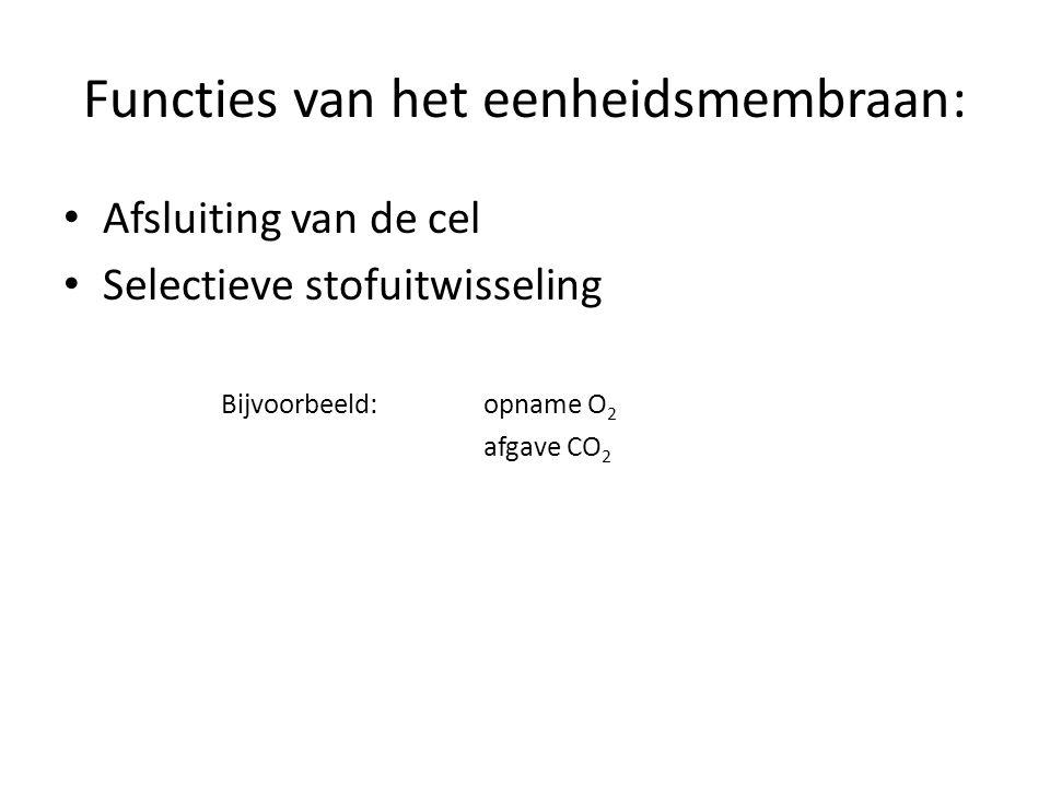 Functies van het eenheidsmembraan: • Afsluiting van de cel • Selectieve stofuitwisseling Bijvoorbeeld: opname O 2 afgave CO 2