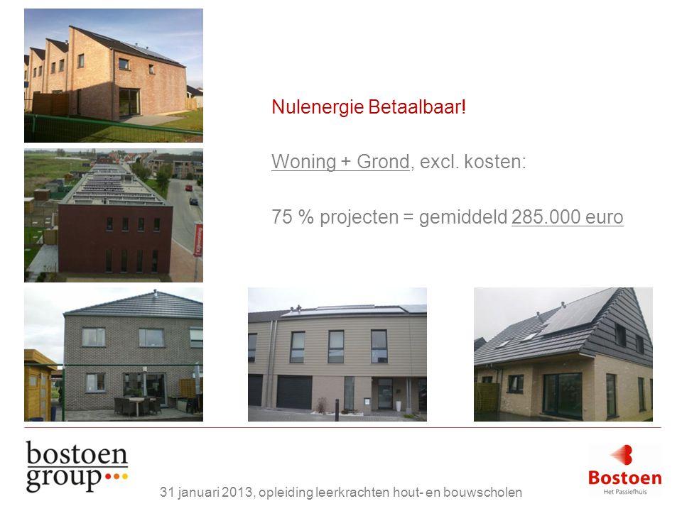 Nulenergie Betaalbaar! Woning + Grond, excl. kosten: 75 % projecten = gemiddeld 285.000 euro 31 januari 2013, opleiding leerkrachten hout- en bouwscho