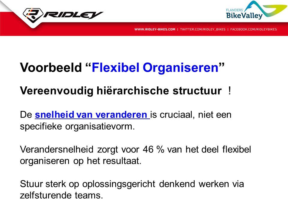 """Voorbeeld """"Flexibel Organiseren"""" Vereenvoudig hiërarchische structuur ! De snelheid van veranderen is cruciaal, niet een specifieke organisatievorm. V"""