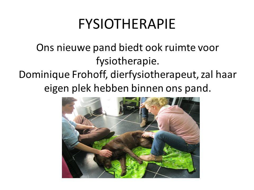 FYSIOTHERAPIE Ons nieuwe pand biedt ook ruimte voor fysiotherapie. Dominique Frohoff, dierfysiotherapeut, zal haar eigen plek hebben binnen ons pand.