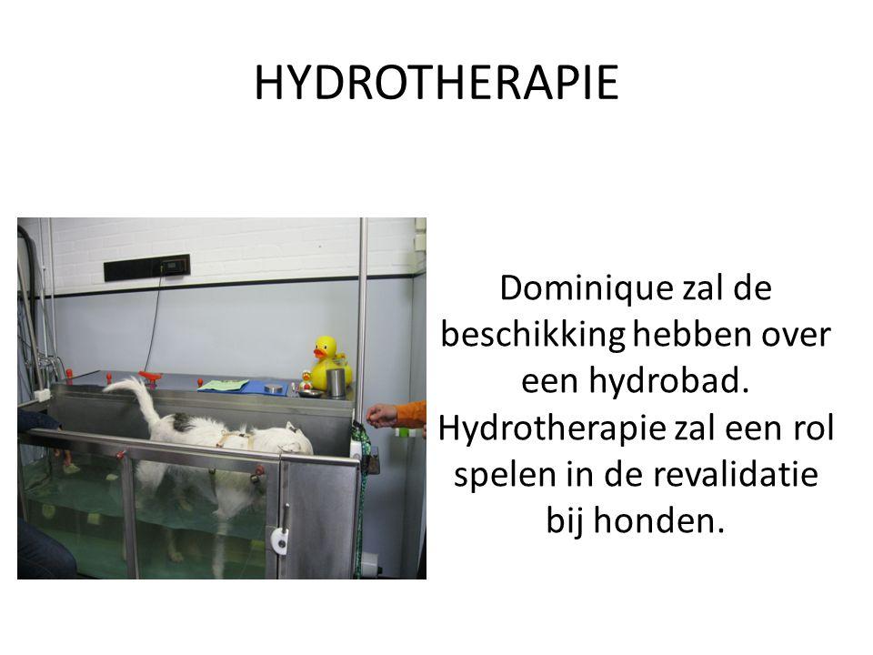 HYDROTHERAPIE Dominique zal de beschikking hebben over een hydrobad. Hydrotherapie zal een rol spelen in de revalidatie bij honden.