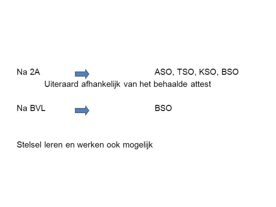 Na 2A ASO, TSO, KSO, BSO Uiteraard afhankelijk van het behaalde attest Na BVL BSO Stelsel leren en werken ook mogelijk