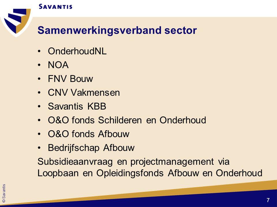 © Savantis Vragen over het Sectorplan, de maatregelen en uitvoering? 18