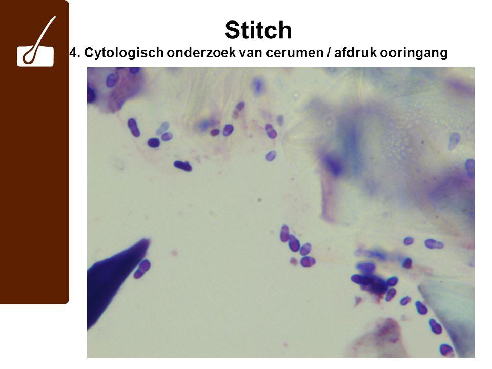 Stitch 5. Wat is uw DDx •voedselovergevoeligheid •atopische dermatitis