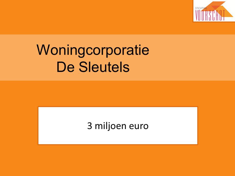 Woningcorporatie De Sleutels 3 miljoen euro