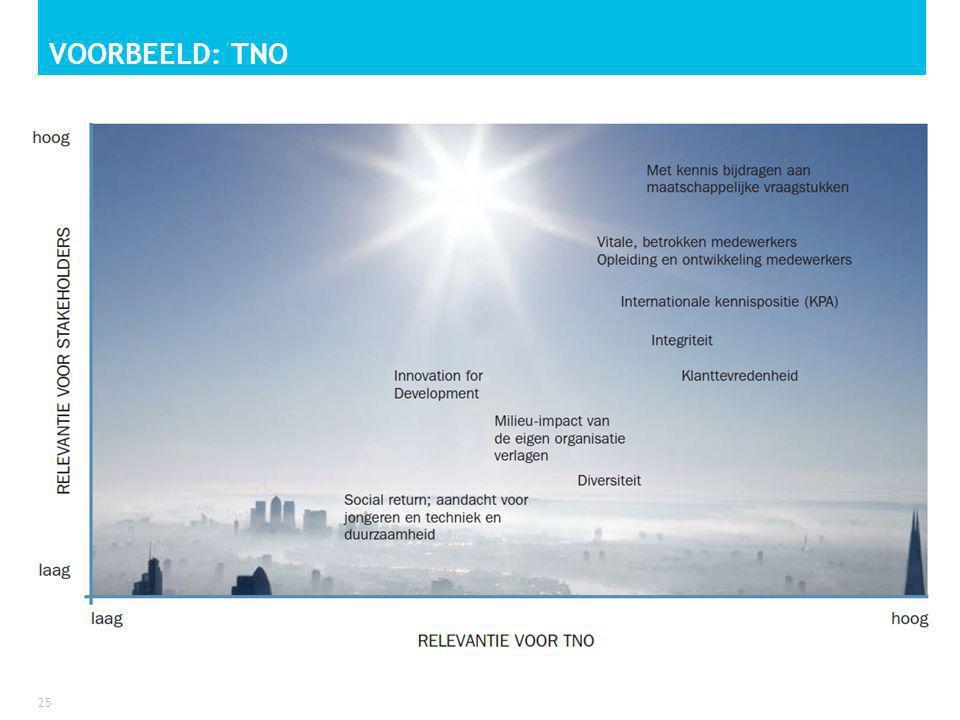 VOORBEELD: TNO 25
