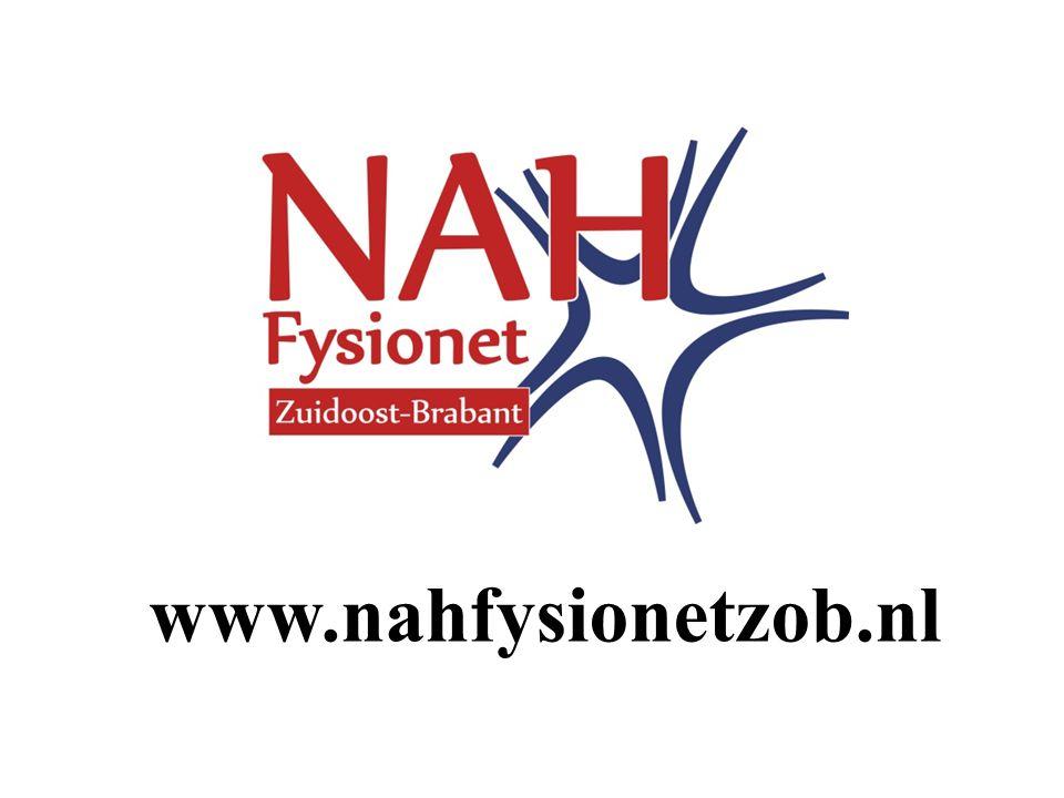 www.nahfysionetzob.nl