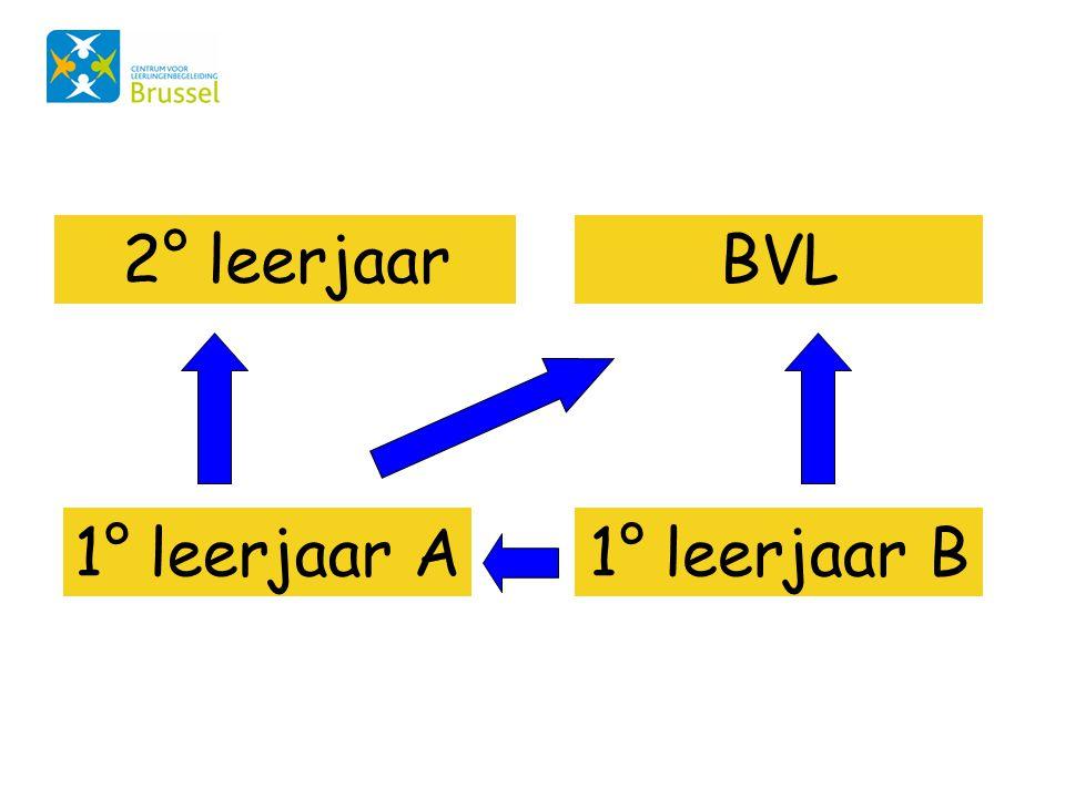 1° leerjaar A1° leerjaar B 2° leerjaarBVL