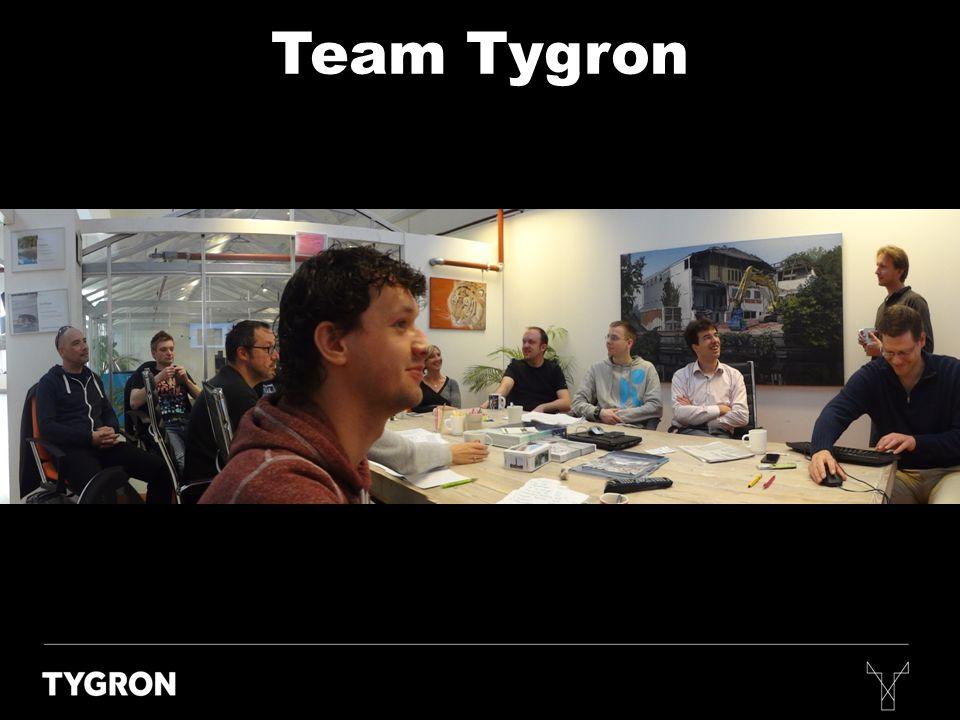 Team Tygron