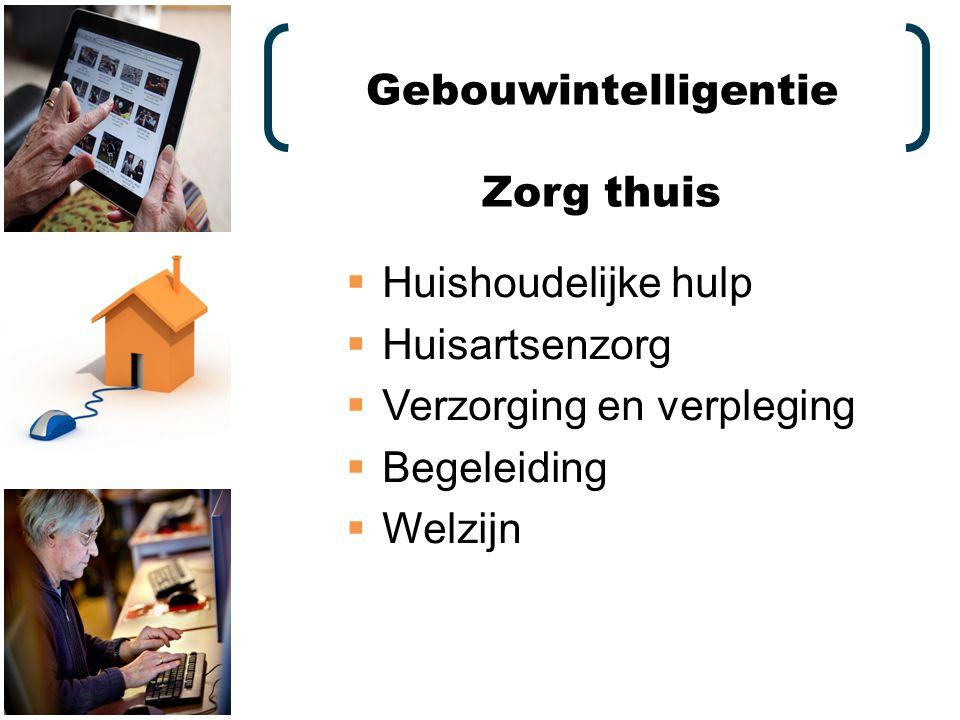  Huishoudelijke hulp  Huisartsenzorg  Verzorging en verpleging  Begeleiding  Welzijn Gebouwintelligentie Zorg thuis