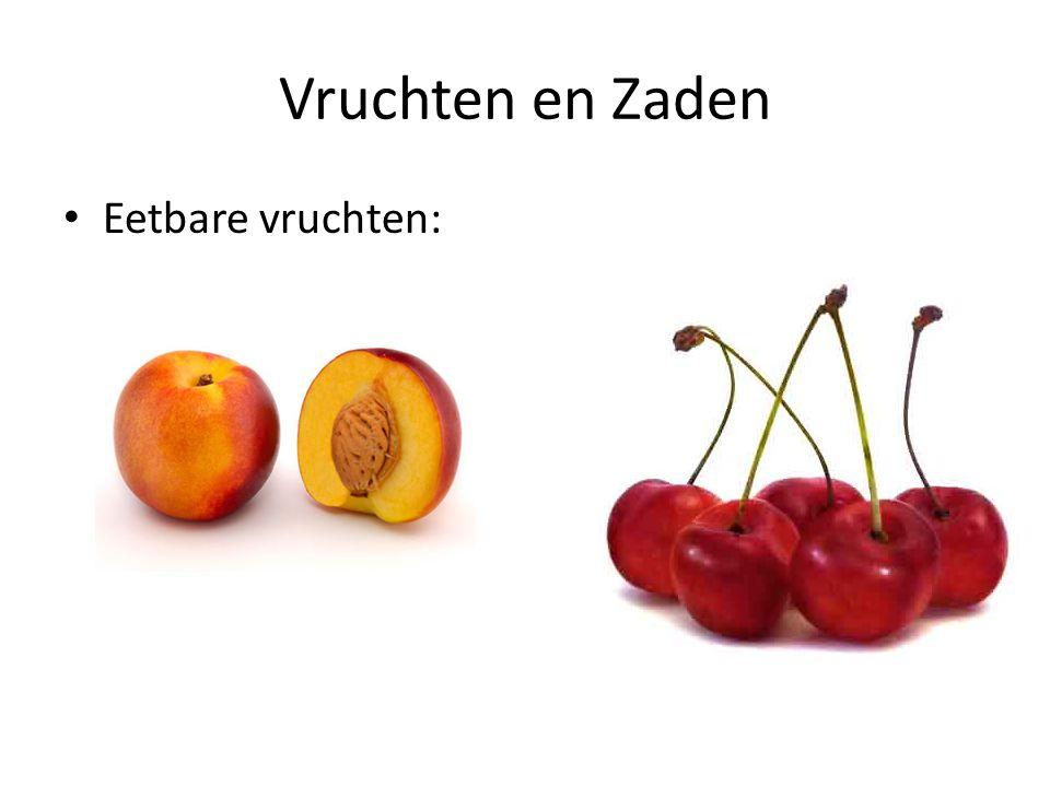 Vruchten en Zaden • Eetbare vruchten: