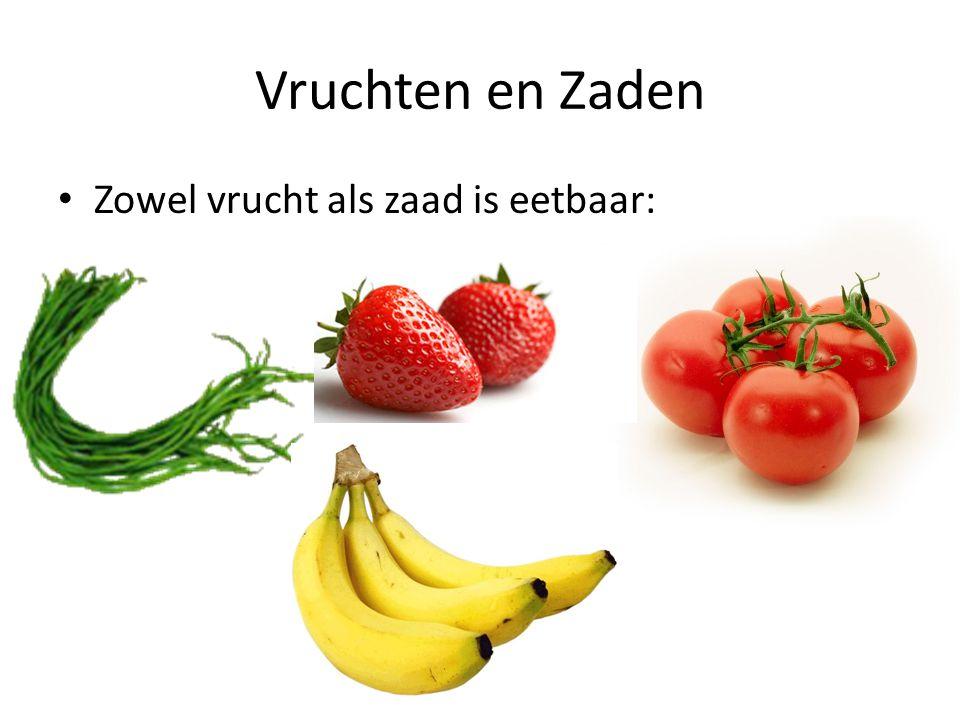 Vruchten en Zaden • Zowel vrucht als zaad is eetbaar: