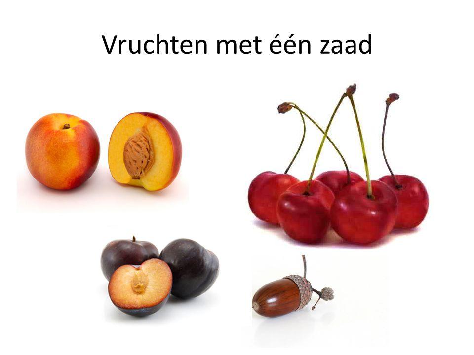 Vruchten met één zaad