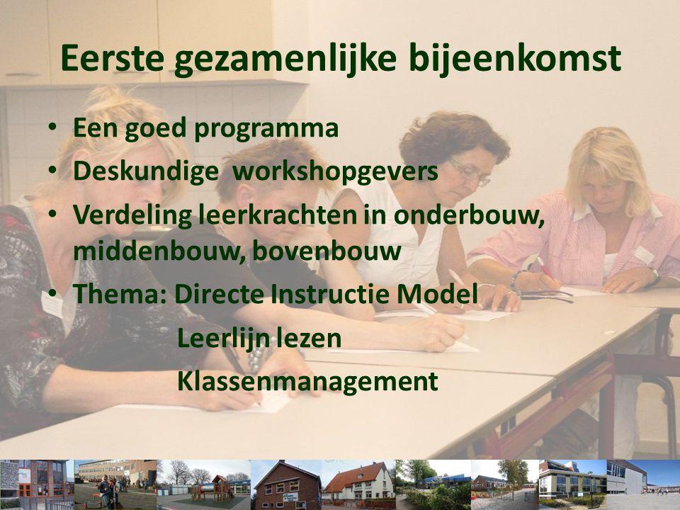 • Een goed programma • Deskundige workshopgevers • Verdeling leerkrachten in onderbouw, middenbouw, bovenbouw • Thema: Directe Instructie Model Leerli