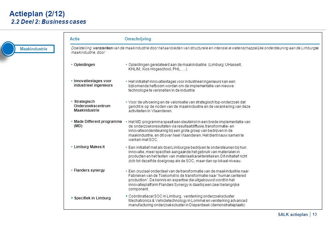 SALK actieplan 13 Doelstelling: versterken van de maakindustrie door het aanbieden van structurele en intensieve wetenschappelijke ondersteuning aan d