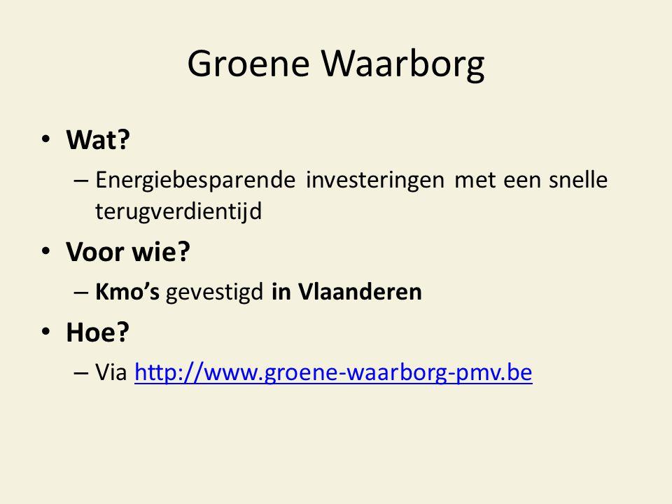Groene Waarborg • Wat? – Energiebesparende investeringen met een snelle terugverdientijd • Voor wie? – Kmo's gevestigd in Vlaanderen • Hoe? – Via http