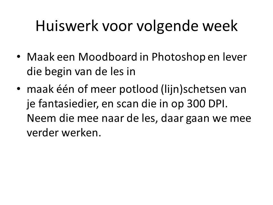 Huiswerk voor volgende week • Maak een Moodboard in Photoshop en lever die begin van de les in • maak één of meer potlood (lijn)schetsen van je fantas