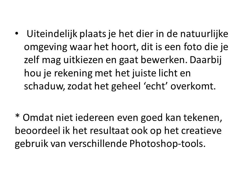 Technische specificaties • Gelaagd Photoshop document, RGB • Minimaal 2500 x 1800 pixels (A3) • Uitgeprinte versie van het eindproduct