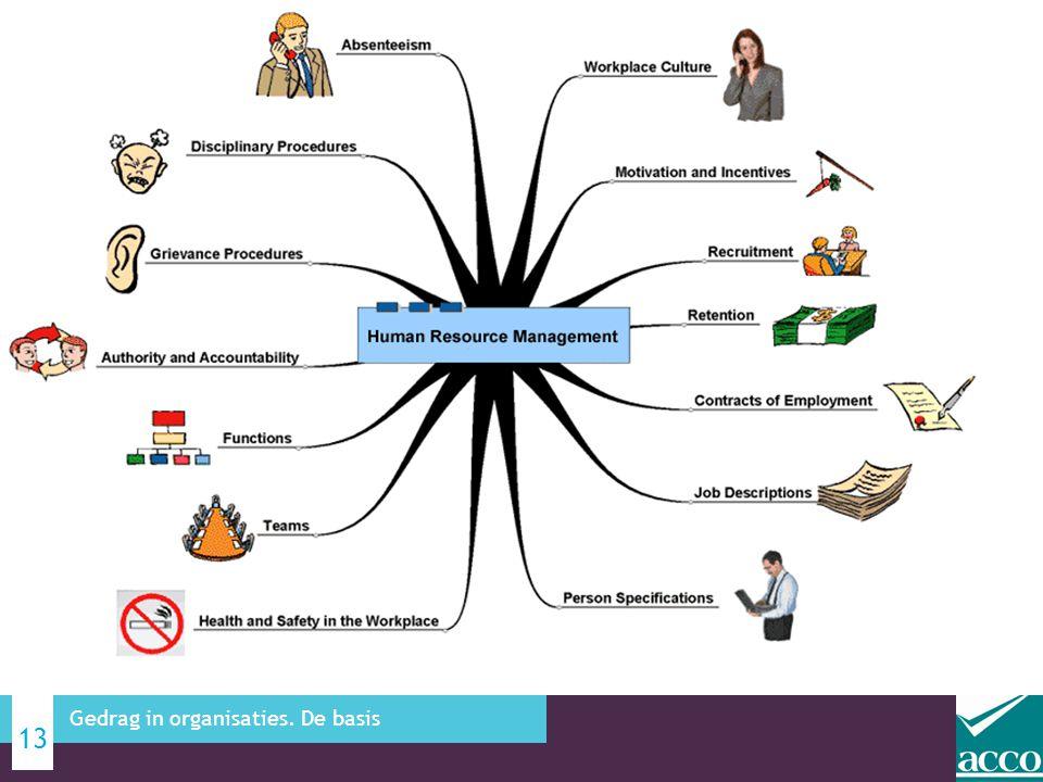 13 Gedrag in organisaties. De basis