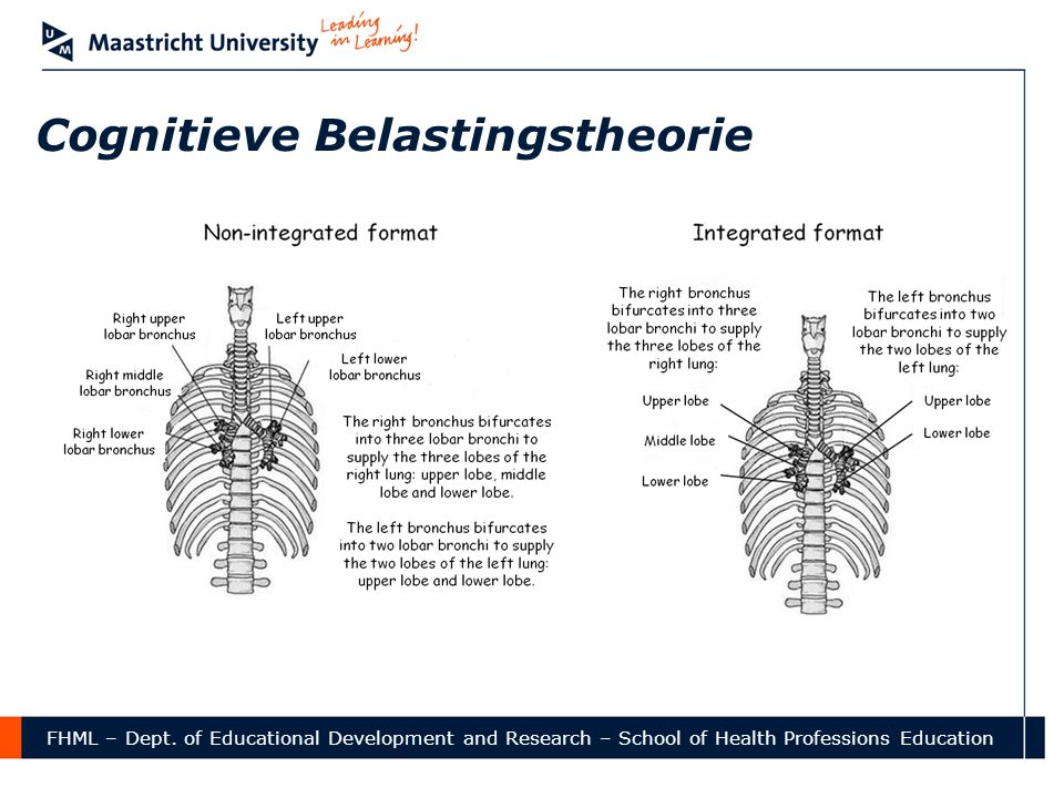 FHML – Dept. of Educational Development and Research – School of Health Professions Education Cognitieve Belastingstheorie