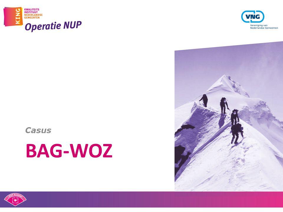 BAG-WOZ Casus